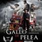 || GALLO DE PELEA ||